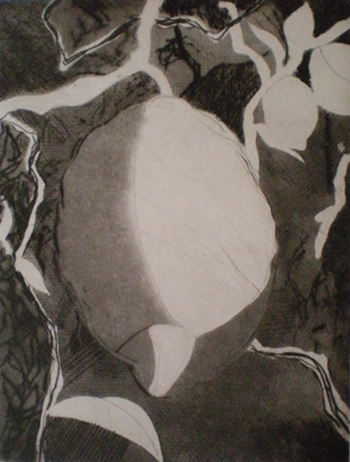 Lemons On The Lemon Tree etching